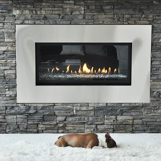 dog in front of a medium indoor contemporary fireplace